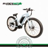 Bafang 중앙 모터 뚱뚱한 타이어 산 전기 자전거