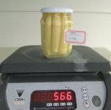 缶詰食品の缶詰にされた赤ん坊トウモロコシ370ml