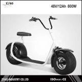 [هيغقوليتي] [1000و] [62ف/12ه] بالغ كثّ مكشوف [سكوتر] كهربائيّة, 2 عجلات [إ-سكوتر] درّاجة ناريّة كهربائيّة
