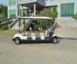 Großhandel batteriebetriebene Sightseeing Auto