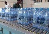 Thermische Shrinkfilm Shrink-Verpackungsmaschine für Traubensaft für Kirschsaft