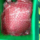 Anel-O vermelho do plutônio do anel-O do silicone de Vmq do silicone