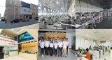 Roestvrij staal 304 de Halfautomatische Chinese Leverancier van de Machine van de Verpakking van het Hoofdkussen van Bladeren Plantaardige