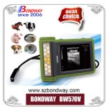 O equipamento de diagnóstico veterinário scanner de ultra-som portátil, o EFP USG