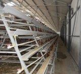 Аккумуляторная батарея Ponedoras Jaulas Pollos птицы клеток куриное яйцо отсек для слоя
