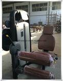 Equipo de ejercicio comercial ajustable silla romana (XW37)