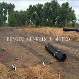 Slope&#160に使用するPP二軸のGeogrid; Planting Grass マット