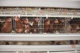 養鶏場のための高品質の鶏のケージシステム