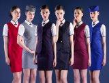 El juego de alineada uniforme de la azafata