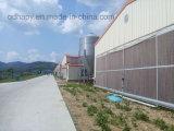 Cage de poulet automatique pour la production de poulets de chair