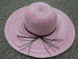 여름 동안 열대 형식 숙녀 밀짚 중절모 모자