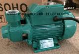 Elektrische Oberflächenwasser-Pumpe für Trinkwasser (QB60/QB70/QB80)
