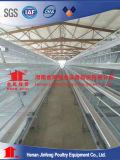 自動化された養鶏場の鶏のケージ(家禽装置)
