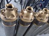 versenkbare tiefe wohle Pumpe 4sk200, für Bauernhof und Bewässerung