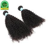 Hochwertiges unverarbeitetes kambodschanisches lockiges Jungfrau-Haar