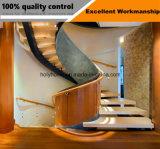 Estilo Euro de madera Escalera de Arco de acero para interiores