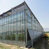 Kundenspezifisches 2140X3300mm kugelsicheres Glasgewächshaus-lamelliertes Glas