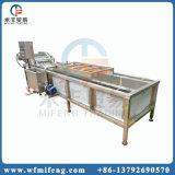 De Schonere Wasmachine van de Borstel van de Gember van de Groente van het blad