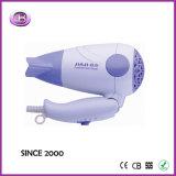 Vollkommenes Dual Voltage How zu Blowdry Your Hair, Dryer