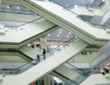 Escalator Shopping Mallのための経済的で、Safe