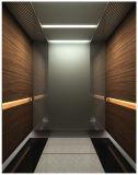 Surtidor residencial del elevador del pasajero en China