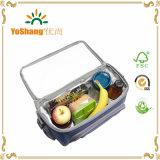 Bolsa de almoço de refrigeração isolada e personalizada de 2016