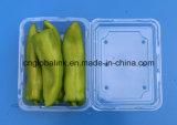 Casella a gettare di imballaggio di plastica del cestello di plastica libero di imballaggio per alimenti per la verdura