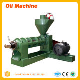 Estábulo que trabalha o expulsor automático do petróleo da imprensa de parafuso