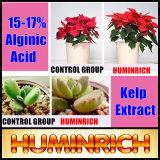 Huminrich melhora a absorção de nutrientes (CEC) solúvel fertilizante de algas