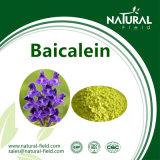 Pó 98% CAS491-67-8 de Baicalein da fonte do fabricante