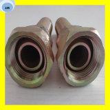 Montaggio di tubo flessibile idraulico di Bsp Multiseal 22111 femminili