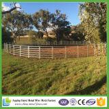 Панель скотин Австралии стандартная сверхмощная овальная Rali Galvanzied