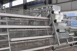 (JFW-08) Клетка рамки оборудования птиц цыпленка на надувательстве