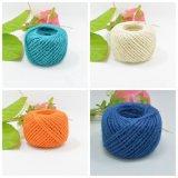 Ambiental al por mayor más cuerda bien escogida del color para la decoración de DIY
