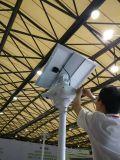 30W IP65 im Freien LED Straßenlaternesolar mit hohem leuchtendem