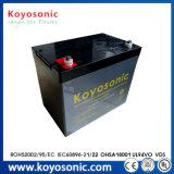 Batteria marina del comitato solare del AGM della batteria di via della batteria solare dell'indicatore luminoso