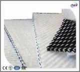 Lit de la route Tri-Dimensional Drainage(3D) Composite HDPE Geonet