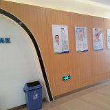 Los paneles de pared impermeables e incombustibles decorativos de HPL