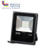 30W IP65 옥외 LED 투광램프 정착물 실내 LED 플러드 빛 갱도 점화