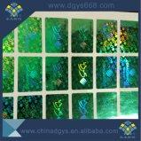 Laser-Hologramm-Sicherheits-Aufkleber mit Rainblow Effekt