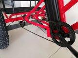 熱いモデル脂肪質のタイヤの電気三輪車