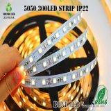 높은 빛난 SMD 5050/2835/3528 방수 지구 LED