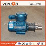 ISO9001ステンレス鋼のさび止めの遠心磁気ガソリンスタンド店頭価格(CQCB)