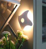 Le détecteur de mouvement d'étoiles de mer allume des lampes pour le mur et le patio extérieurs