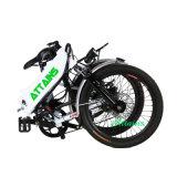 48V 500W 20 '' faltbares Fahrrad des Strand-Schnee-E
