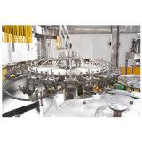 Volledige Automatische Plastic Fles Sprankelende het Vullen van de Drank Machine