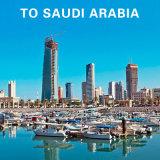 Доставка из Гуанчжоу логистических услуг в Саудовской Аравии