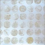 Panneaux transparents de résine acrylique