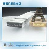 N52 Permanente NeoMagneet NdFeB voor Pompen, Sensoren, Motoren