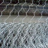 PVCか電流を通された六角形の金網